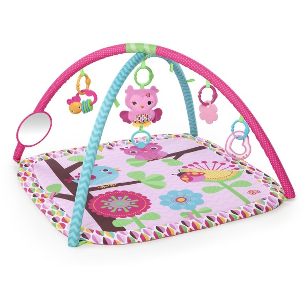 Gimnasio Charming Bright Starts - BS52170